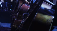 Musicians Are Playing in Orchestra Double Bass Section is Synchronously Playing Stock Footage