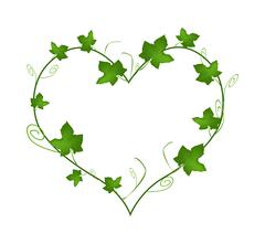 Green Ivy Leaves in Beautiful Heart Shape Stock Illustration