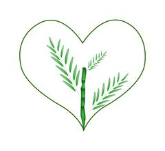 Stock Illustration of Fresh Bamboo Tree in A Heart Shape