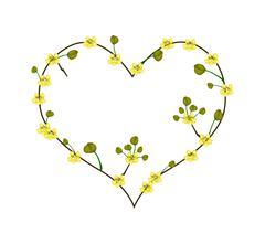 Yellow Cassod Flowers in A Heart Shape - stock illustration