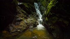 Natural Waterfall over Mossy Rocks in the Jungle, with Sound Stock Footage