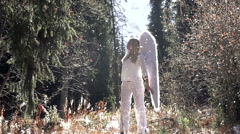 Phenomenon of an Angel HD - stock footage