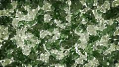 Oil painted green camouflage background Stock Footage