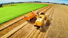 Aerial view of combine harvester at work in a wheat field Stock Footage