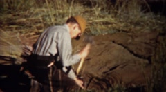 1940: Man setting up hunting blind camping tent with axe hammer. Stock Footage