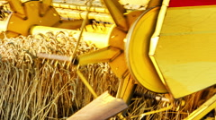 Closeup of combine harvester at work in a wheat field - stock footage