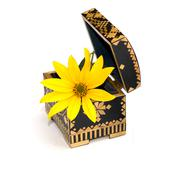 Yellow flower in an open casket, isolate Stock Photos