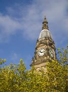 Bolton Town Hall above leafy trees - stock photo