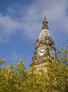 Bolton Town Hall above leafy trees Stock Photos
