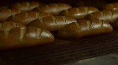 Beautiful buns in the oven. Stock Footage