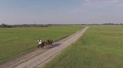 Stock Video Footage of Riding horses by standing on them in the wasteland