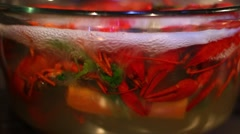 Cooking crawfish in transparent glass pot Stock Footage