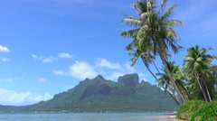 Palm trees swaying in the wind on famous Bora Bora island resort - stock footage