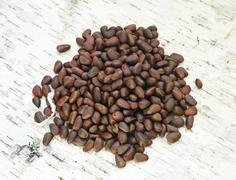 cedar nuts on birch skin - stock photo