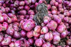 Red onions bunch. Stock Photos