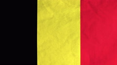 Belgian flag waving in the wind (full frame footage) Stock Footage