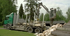 A log grapper getting big logs from the truck Stock Footage