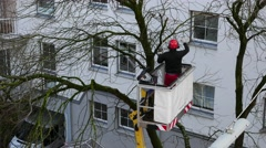 4K Communal Worker pruning cutting tree with electric chainsaw saw Winter Spring Stock Footage