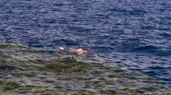 Man dives in the red sea 2 Stock Footage