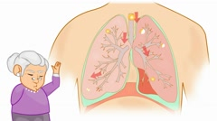 Lungs Anatomy  - Vector Cartoon - White Background - grandma - stock footage