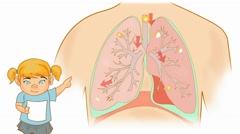 Lungs Anatomy  - Vector Cartoon - White Background - girl Stock Footage