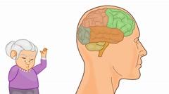 Brain Anatomy  - Vector Cartoon - White Background - grandma - stock footage