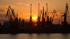 Huge cranes are at Odessa trading port at sunset, tilt, industrial background - stock footage