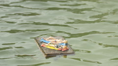Two plastic figurines tanning on water, displayed at the Mini-Europe, Brussels Stock Footage