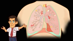 Lungs Anatomy  - Vector Cartoon - Black Background - professor - stock footage