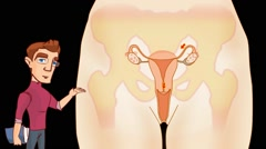 Vagina Anatomy  - Vector Cartoon - Black Background - student - stock footage