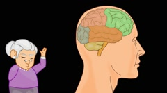 Brain Anatomy  - Vector Cartoon - Black Background -  grandma Stock Footage