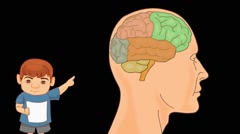 Brain Anatomy  - Vector Cartoon - Black Background - boy Stock Footage
