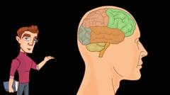 Brain Anatomy  - Vector Cartoon - Black Background -  student - stock footage