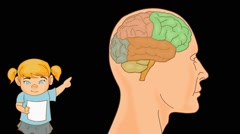 Brain Anatomy  - Vector Cartoon - Black Background -  girl Stock Footage
