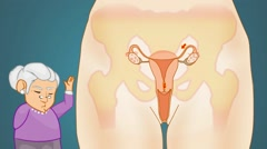 Vagina Anatomy  - Vector Cartoon - Blue Background - grandma - stock footage