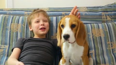 9 years old kid and 5 month old beagle puppy sitting on sofa - stock footage
