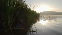 Early Morning Sunrise On A Pretty English Mere Stock Footage