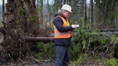 Forest inspector using tablet PC in destroyed forest Stock Footage