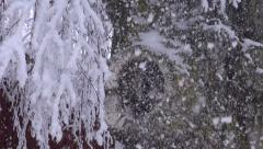 Old birch stump with a hole and snowfall Stock Footage