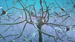 Neurons and neural system Stock Footage
