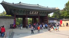 Tourists with the Deoksugung royal guards. Seoul, South Korea. - stock footage