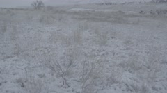 Bleak shot of winter field, rocky mountain foothills, Unsaturated SLog - stock footage