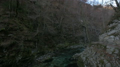 View of the Vintgar Gorge, carved by the Radovna River, near Bled Stock Footage