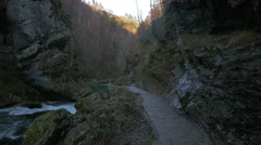 Empty path next to the Radovna River at the Bled Gorge, near Bled Stock Footage