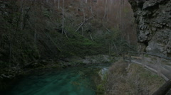 The green water of the Emerald River at the Vintgar Canyon, near Bled Stock Footage