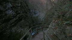 Path next to the Radovna River (Emerald River) at the Vintgar Canyon, near Bled Stock Footage