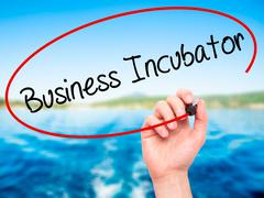 Man Hand writing Business Incubator with black marker on visual screen - stock photo