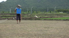 China agriculture, farmer sprays fertilizers on dry paddy field Stock Footage