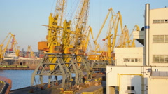 Big yellow cranes at wharf of Odessa, Ukraine, pan  Stock Footage