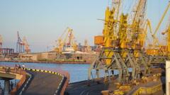 Yellow cranes at trading port of Odessa, Ukraine - stock footage